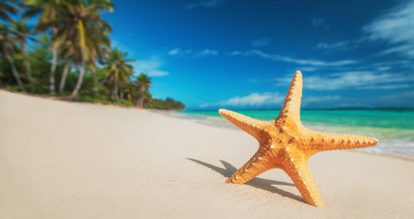 The Best Beaches in Punta Cana, Dominican Republic